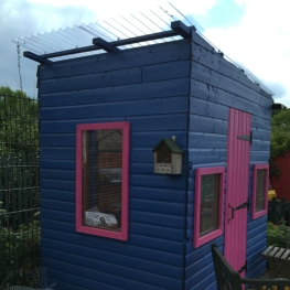 shed nearly done2